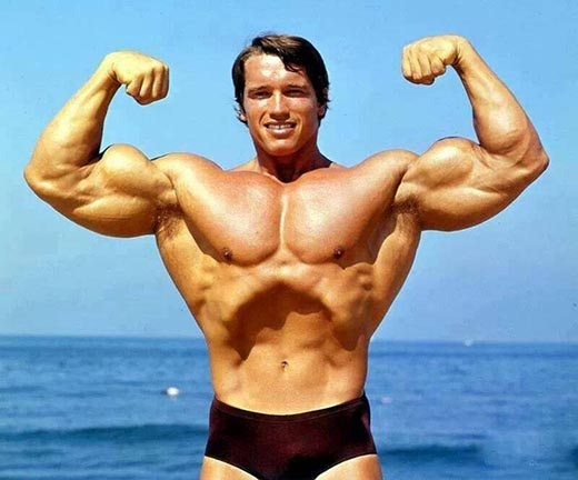 Стероиды истории тестостерона пропионат бодибилдинг