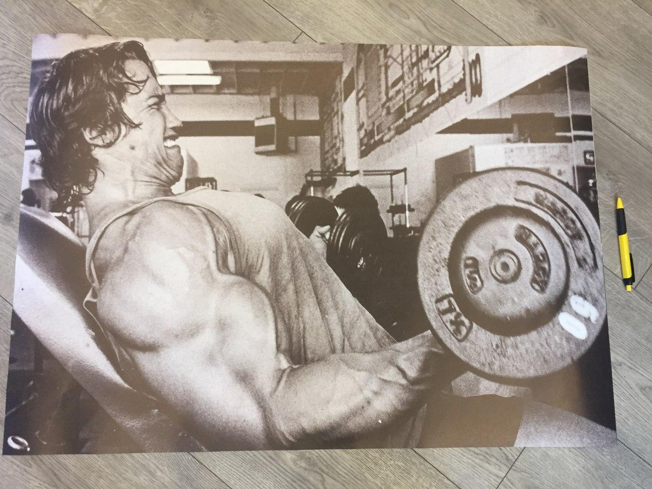 протеин стероиды купить